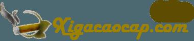 Logo Xì Gà Cao Cấp