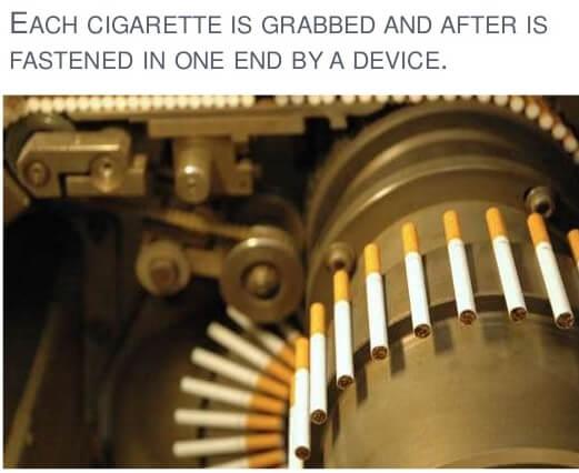 qua trinh sx thuoc la - Sự Khác biệt giữa xì gà và thuốc lá điếu